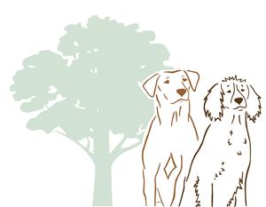 BOGGWATER GUNDOGS Logo